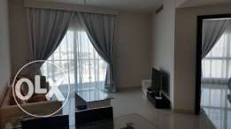 brand new fully furnished apartment zinj