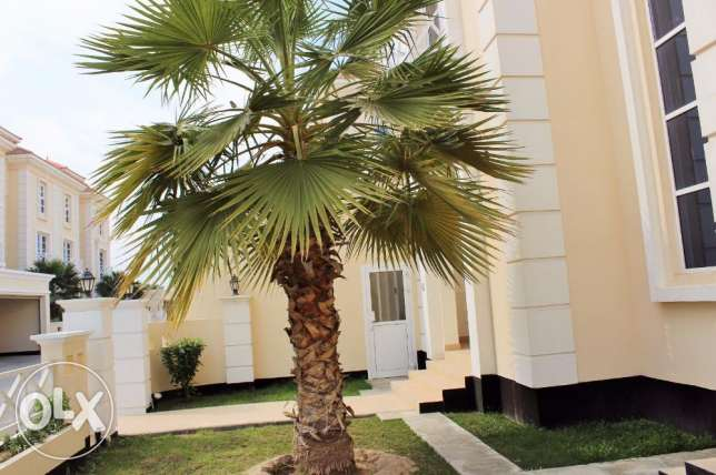4 Bedroom Amazing s/f Villa in Hamala