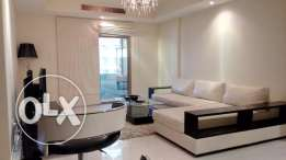 Ultra Spacious Modern Furnished 1 BR Apartment