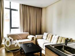 Fully Furnished Brand New 1 BR Apartment