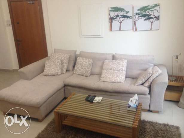 Modern 1 Bedroom Apartment for rent 400 in Adliya