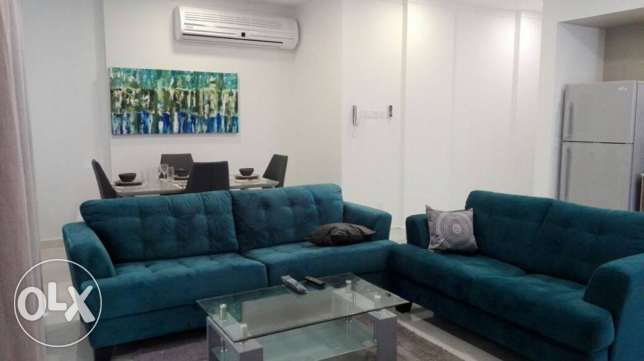 brand new fully furnished apartment in janabiya