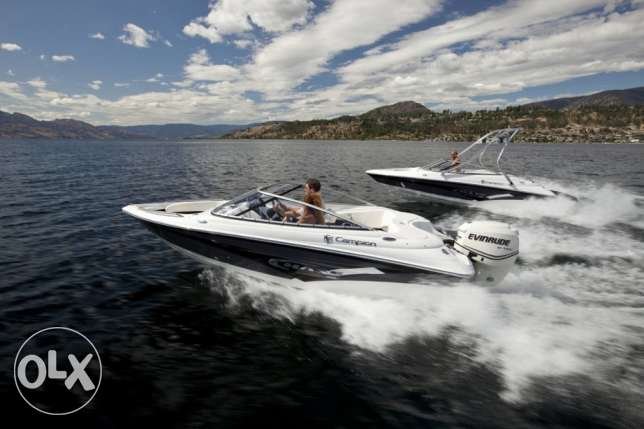 Campion Chase 500ob for sale