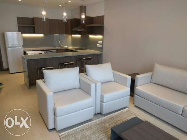 1 BR fully furnished modern flat near city center - all inclusive