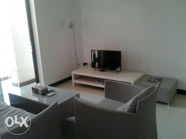 Beautiful 1 Bedroom Flat Fully furnished Hall And Open KItchen