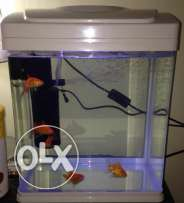 Fish Tank for sale excellent condition