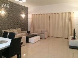 Comfy 2 bedroom fully furnished apartment