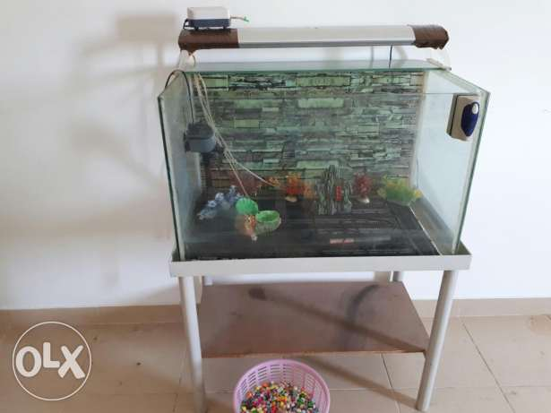 Tank fish 30 BHD  For sell للبيع