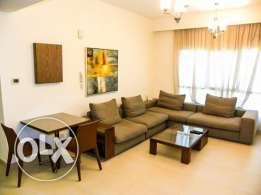 Modern Luxurious Furnished 1 BR Apartment