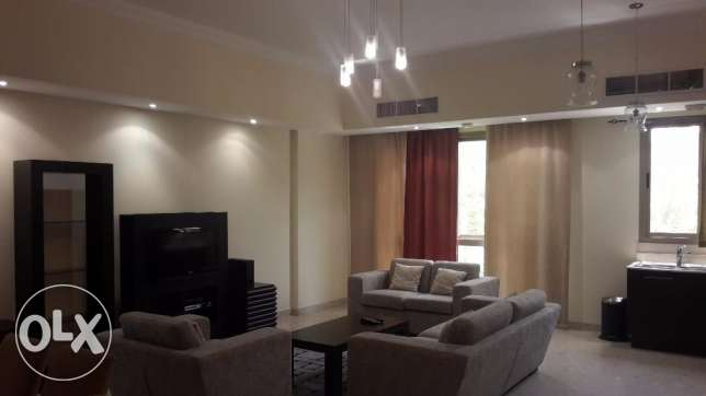 Spacious 2 BR Apartment in Adliya