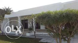Amazing 3 BR villa in Janabiya with Huge garden