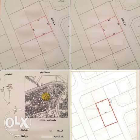 Land For Sale In Arad