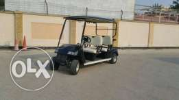 Eagle EV (Golf-Cart)