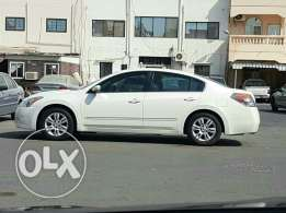 2011 Altima For Sale