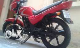 Delivery Bike - Striker 125cc Good Condition with 1 Year Insurance