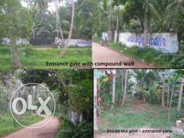 India - Kerala - 80 Cents Resort / Boating Plot for SALE