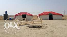 مخيم الصقر الصخير camp for rent