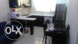 1BR full furnished flat for rent