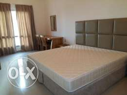 2 bedroom beautiful fully furnished apartment in New hidd
