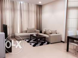 Brand new luxury 1 bedroom fully furnished apartment
