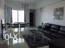 Awesome Modern Furnished 1 BR Apartment Rent 650