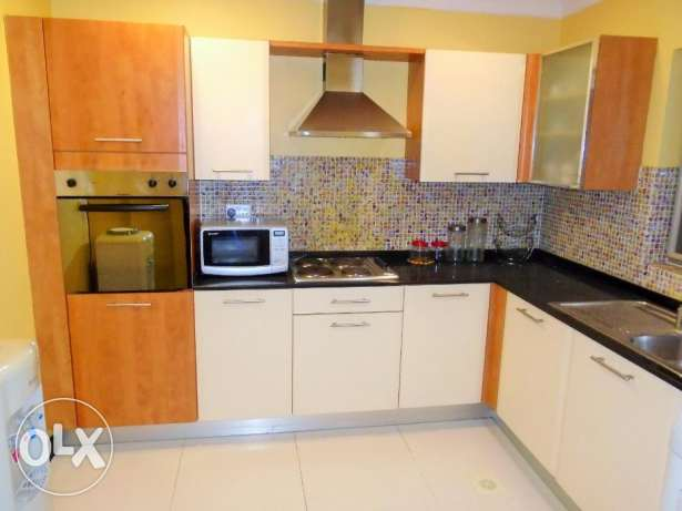 Beautiful 2 bedroom flat fully furnished in Adliya
