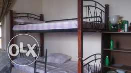 Bunk\Double Bed for URGENT SALE