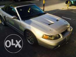 SVT cobra for sale!