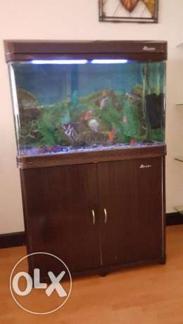 House hold furniture for sale:Recliner sofa/ Bar counter/fish aquarium
