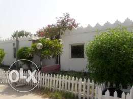 Hamala:- 3Bhk Semi Furnished Compound Villa on Rent