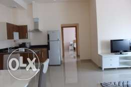 2 bed fully furnished brand new flat in Adliya
