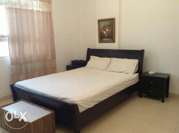 Want to share with Executive Bachelor 1 bedroom in 2bhk fully furnishe