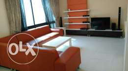 Luxury 1 bedroom fully furnished apartment for rent