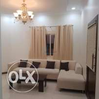 Furnished spacious two-bedroom apartment