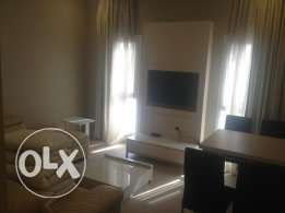 Brand one bedroom furnished apartment for rent 350