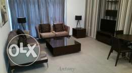 Brand New, Modernly furnished, beautiful & Stylish apartment - Antony