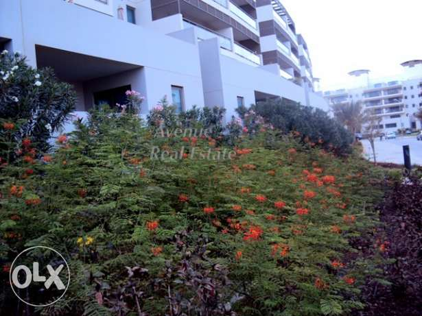 Tala Amwaj- Hurry up! Great Offer : 2 BR Apartments for quick rent! جزر امواج  -  2