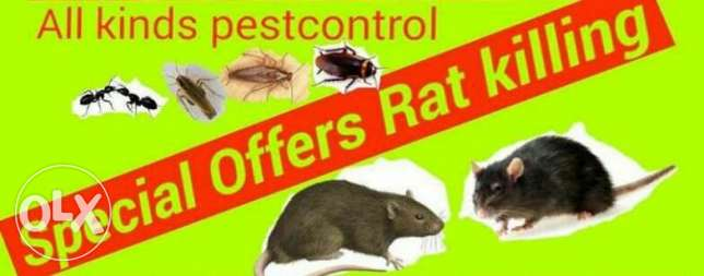 Pest control for bed bugs and cockroaches